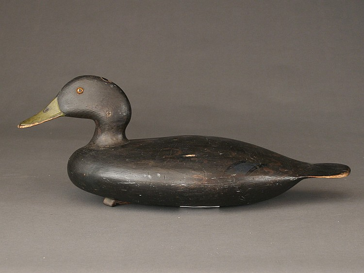 Blackduck, Stevens Brothers, Weedsport New York, circa 1880's.
