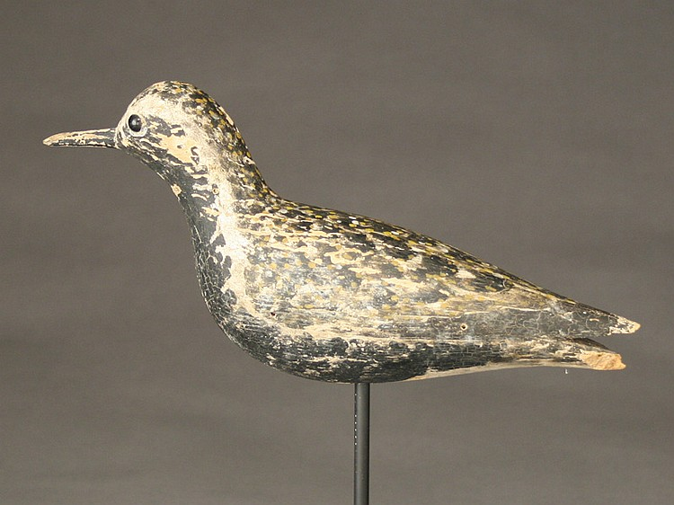 Golden plover, Elmer Crowell, East Harwich, Massachusetts, 1st quarter 20th century.