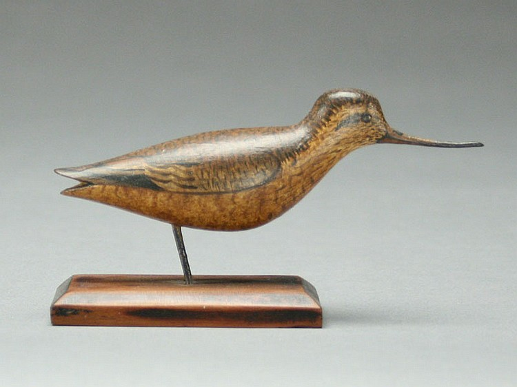 Rare miniature godwit, George Boyd, Seabrook, New Hampshire.