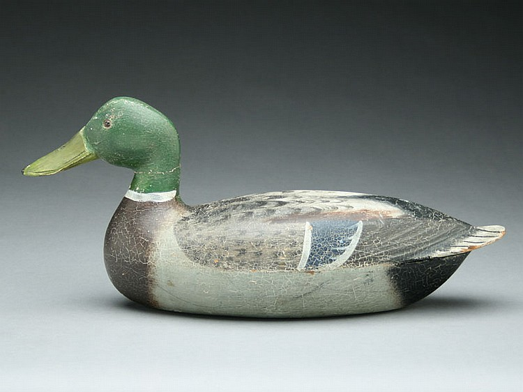 Mallard drake, Michael Vallero, Spring Valley, Illinois, 2nd quarter 20th century.
