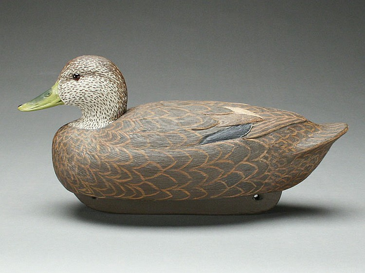 Hollow carved blackduck, Cigar Daisey, Chincoteague, Virginia.