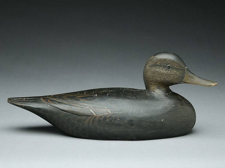 Blackduck with turned head, Elmer Crowell, East Harwich, Massachusetts.