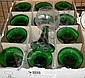 Vinglas, 12 st, grön fot med cuppa i klarglas,