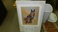 signed Merry Kelly horses limited edition print, listed artist