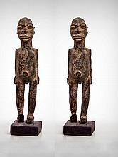 A Pair of Gambari Male and Female Guardian