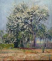 Tillmans, Willi, 1888-1985, Blühende Bäume,