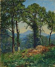 Charles Alexandre Bertier, 1860-1924