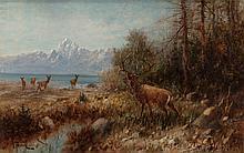 JOHN FERY (American, 1859-1934) Elk on Jackson Lake, Wy