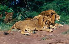 WILHELM KUHNERT (German, 1865-1926) Ruhende Löwen (Lion