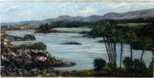 An Oil Painting   Tropical landscape