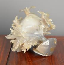 A Shell Carving Decoration