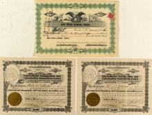 Trio of Hawaiian Stock Certificates