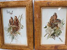 A pair of paintings on glass, depicting birds on