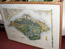 An old Geological Map of the Isle of Wight - framed and glazed