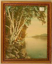 Charles Sawyer - Silver Birches, Lake George