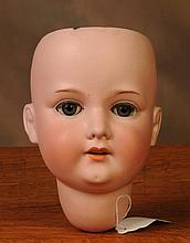 Armand Marseille 390 Bisque Doll Head