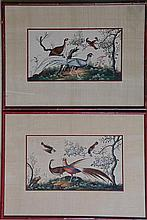 Pr. of Vintage Chinese Watercolors