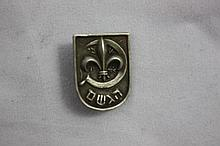 Pin of Gordonia Youth Movement, Achieve, Palestine, Rare
