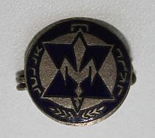 Lapel pin, 'HaNoar HaZioni' youth organization