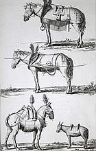 Diderot,D.;J.d'Alembert.