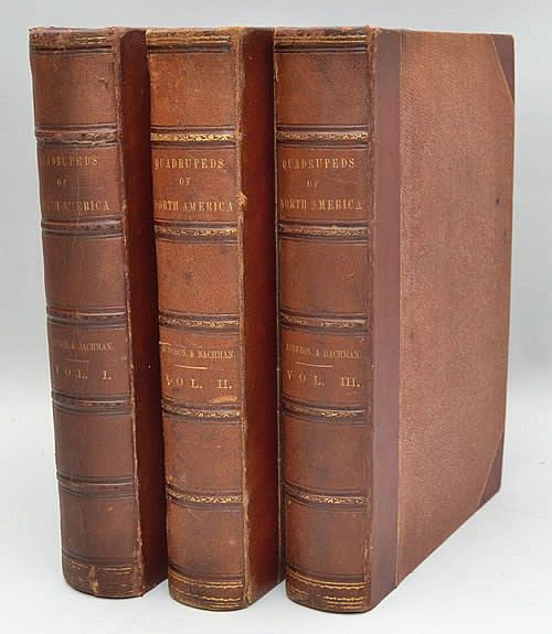 The Quadrupeds of North America by John James Audubon and Rev. John Bachman - 3 Volumes