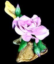 Boehm Dwarf Rose Porcelain Figurine