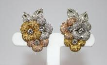 Fancy Color Diamond Earrings by Assil, 10.00cts.
