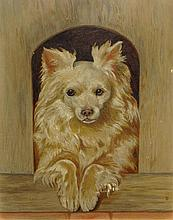 Early 20th Century Probably American Oil on Artist Board, Dog Portrait. Unsigned. Good Condition. Measures 14 Inches Tall and 11 Inches Wide, Frame Measures 15-1/8 Inches Tall and 12-1/8 Inches Wide. Shipping $42.00