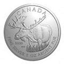 Canadian Silver 1 oz Moose (date of our choice)