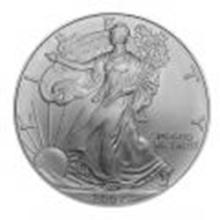 Burnished 2007-W Silver Eagle Original Mint Box