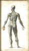 1825 An Introduction To Anatomy And Physiology