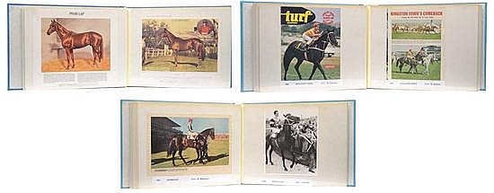 COLLECTION OF IMAGES OF W.S. COX PLATE FINISHES