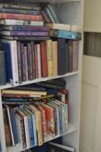 TWO SHELVES OF ASSORTED BOOKS, INCL. THE TRANSIT OF VENUS, AND THE WEB OF TIME