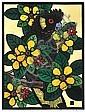 LESLIE VAN DER SLUYS (1939-2010) Yellow Tailed Black Cockatoo and Golden Guinea Tree 1987 linocut 50/90, HC vii