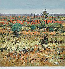 CLEM MILLWARD (born 1929)