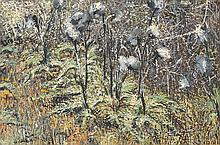 DORA CHAPMAN (1911-1995) Pollock Trees oil on board