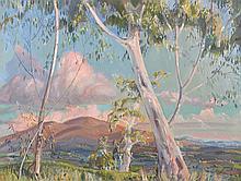 NEIL DOUGLAS (1911-2003) White Gums in Sunset Light oil on board