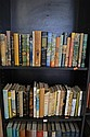 TWO SHELVES OF ASSORTED MODERN NOVELS WITH DECORATIVE DUST JACKETS