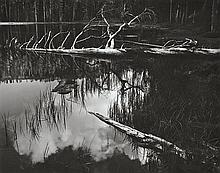ANSEL ADAMS (AMERICAN, 1902-1984) i. Siesta Lake, Yosemite National Park, California, 1958ii. Sequoia Roots, Yosemite National Park,...
