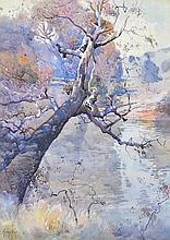 PENLEIGH BOYD (1890-1923) Old Gum Tree 1925 watercolour