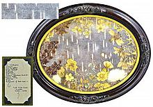 Antique Framed Pressed Wildflowers of Alaska