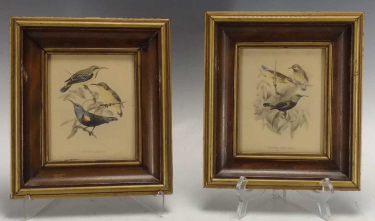 """""""Birds"""" Lithograph"""