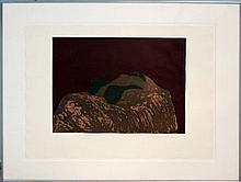 Fritz Scholder (1937-2005) Ltd. Ed. Lithograph #5