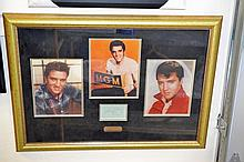 Framed Elvis Presley Signature w/ 3 8x10 Photos