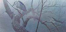 Robert Bateman (1930-) Night Heron Ltd Ed