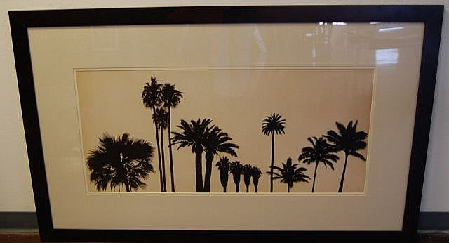Framed Palm Tree Print