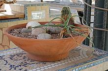 Set of 6 Terra Cotta Planter