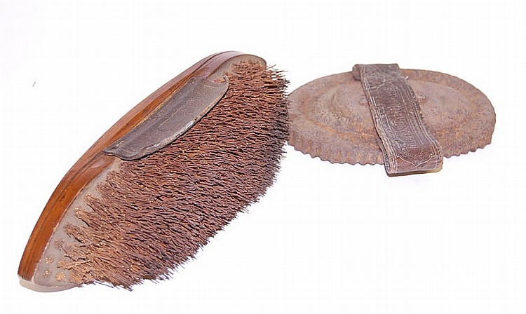Animal Hide Scrapper & Hair Brush