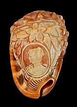Carved Decorative Sea Shell with Cameo
