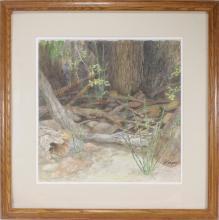 Harper Original Watercolor